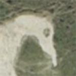 white_horse150X150