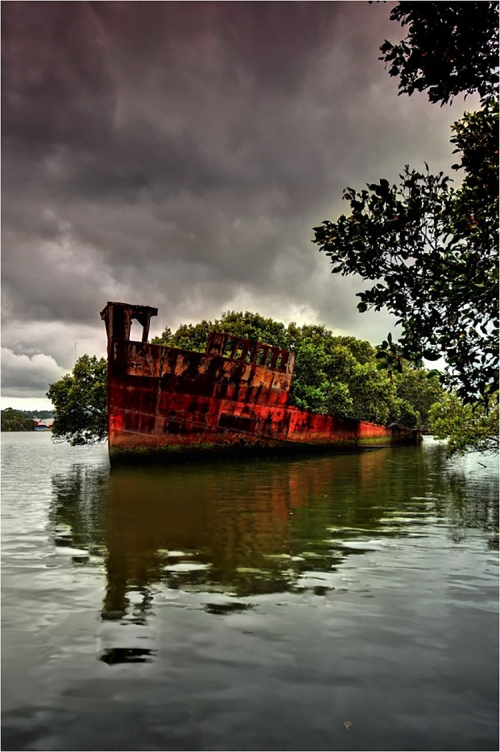 old_ship_forest03