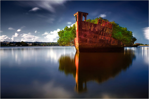 old_ship_forest07